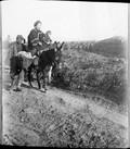 1898 12 Chine T'Aé Yuend  Femme et ses deux enfants à âne