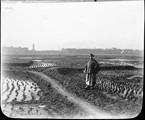 1899 01 Chine  Ts'ing Ling, Ta Pae Chan et rizières