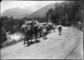 1899 06 Japon  route de Chuzenji, qu'on voit dans la montagne