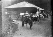 1899 06 Japon route de Chuzenji, en Filauzane