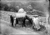 1899 06 Japon homme de paille et son cheval