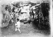 1898 07 26 Singapour huttes et végétation équatoriale