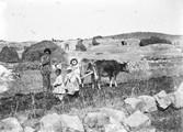1897 10 04 Arménie campement tatar
