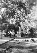 1897 10 07 Arménie Erevan  Nouvelle Mosquée et la piscine