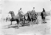 1897 10 07 Arménie Erevan chameaux